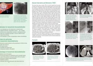 TACE leaflet1