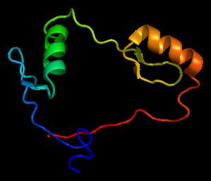Protein_CTCF_PDB_1x6h